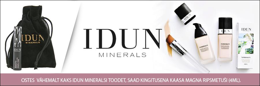 IDUN Minerals kingitus